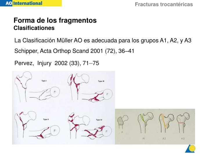 Forma de los fragmentos