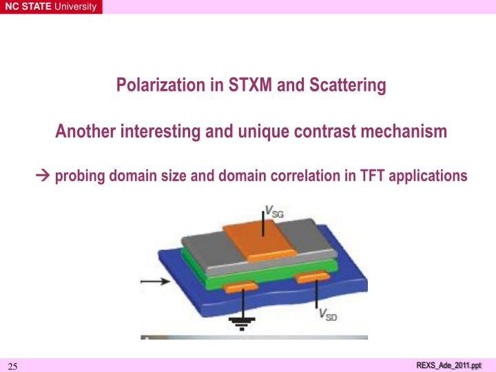Polarization in STXM and Scattering