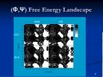 free energy landscape1