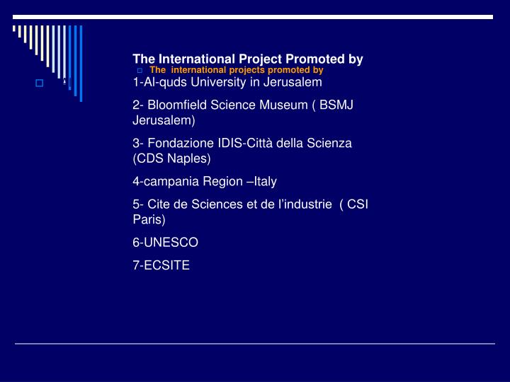 The International Project Promoted by