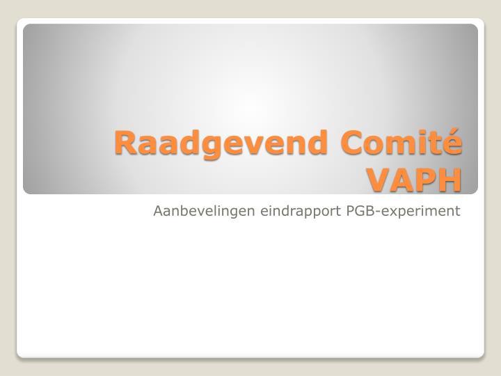 Raadgevend Comité VAPH