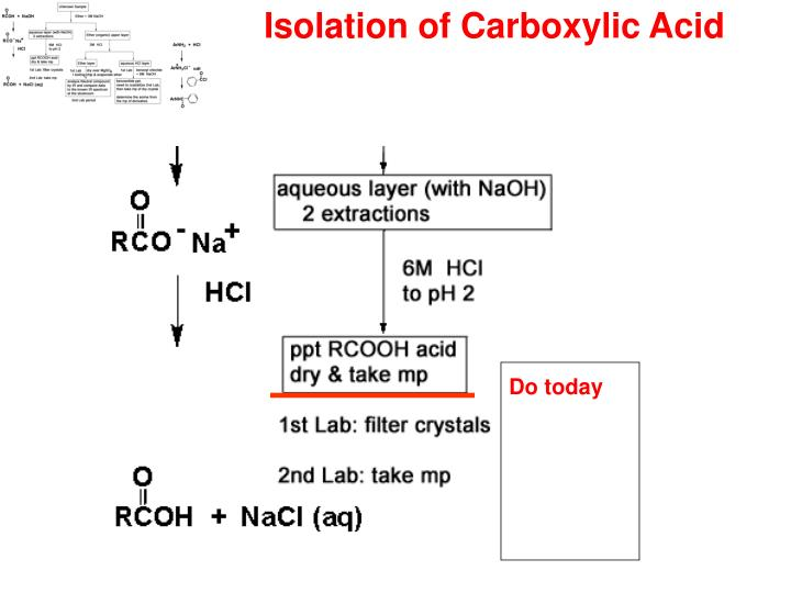 Isolation of Carboxylic Acid