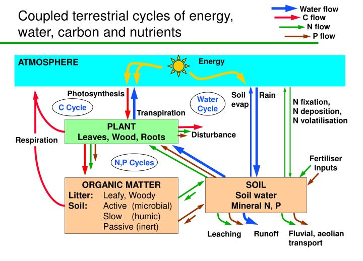 Coupled terrestrial cycles of energy, water, carbon and nutrients