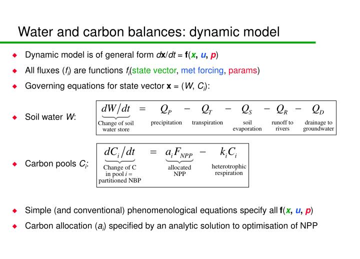 Water and carbon balances: dynamic model