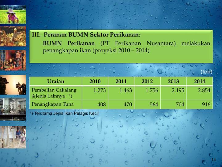 III.  Peranan BUMN Sektor Perikanan
