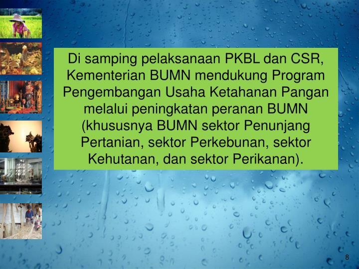 Di samping pelaksanaan PKBL dan CSR, Kementerian BUMN mendukung Program Pengembangan Usaha Ketahanan Pangan melalui peningkatan