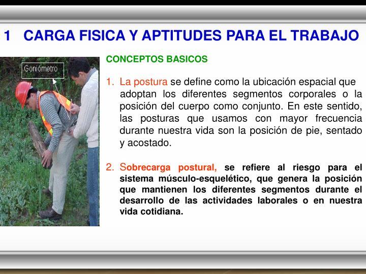 1   CARGA FISICA Y APTITUDES PARA EL TRABAJO