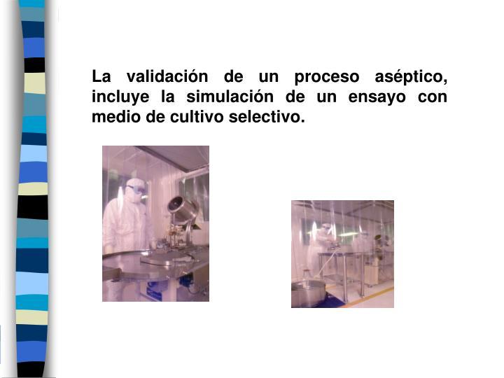 La validación de un proceso aséptico, incluye la simulación de un ensayo con medio de cultivo selectivo.