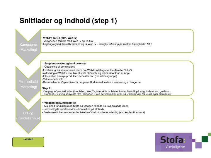 Snitflader og indhold (step 1)