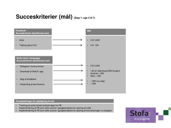 Succeskriterier (mål)