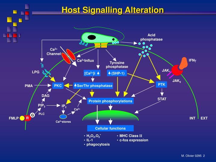 Host Signalling Alteration