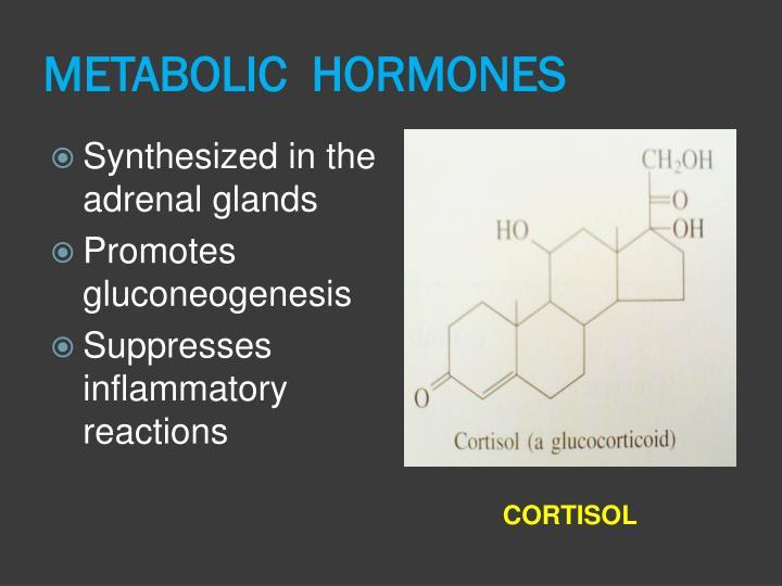 METABOLIC  HORMONES