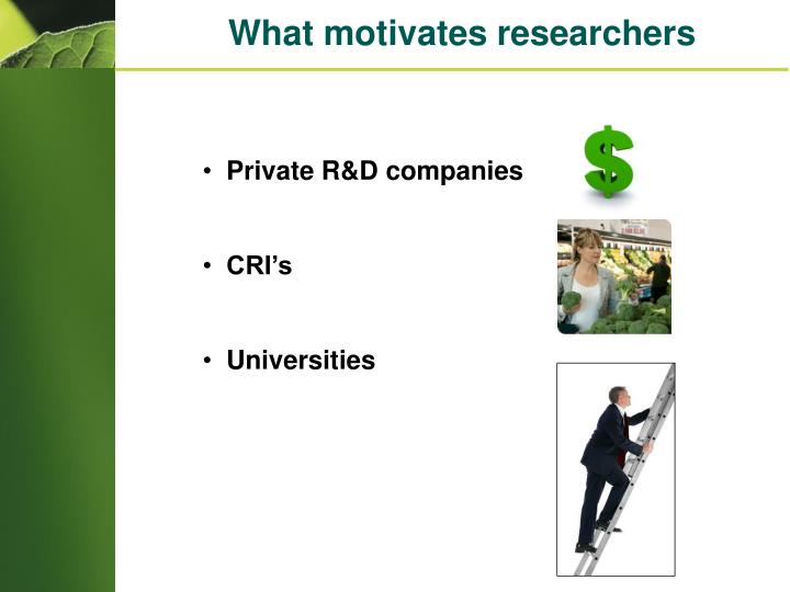 What motivates researchers