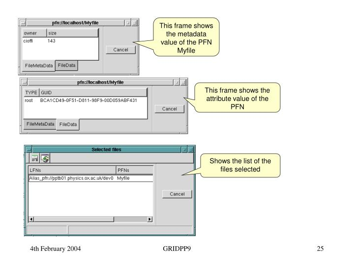 This frame shows the metadata value of the PFN Myfile