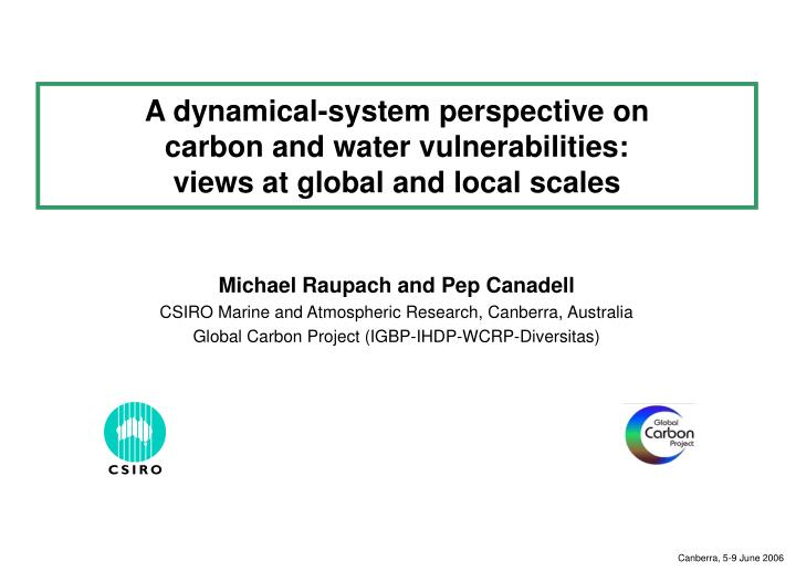 a dynamical system perspective on carbon and water vulnerabilities views at global and local scales