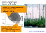 wetland and frozen terrestrial c pools