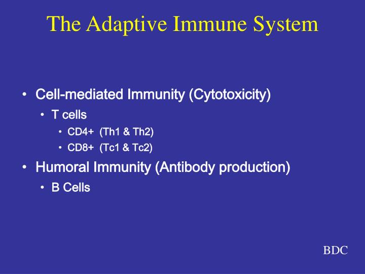 Cell-mediated Immunity (Cytotoxicity)