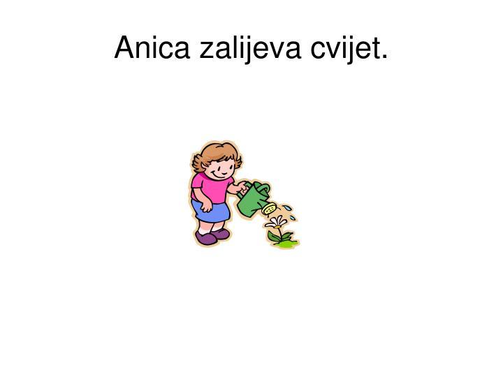 Anica zalijeva cvijet.