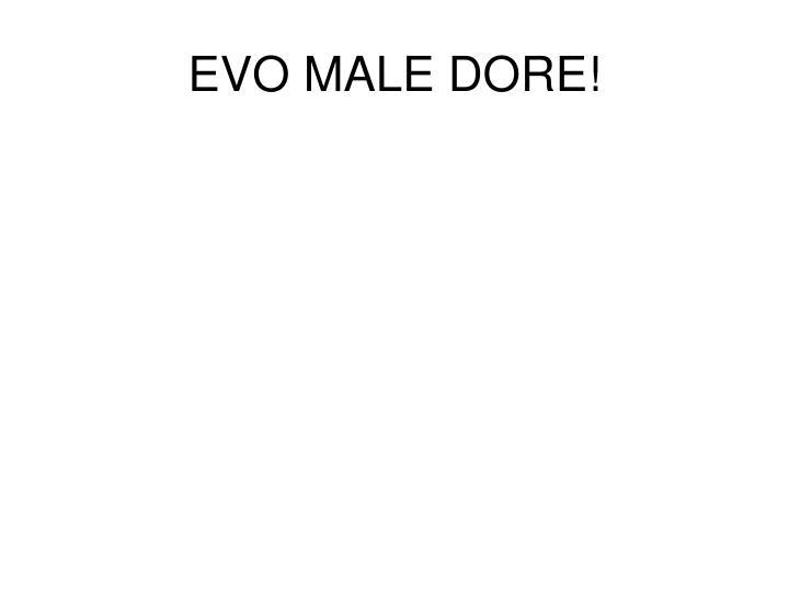 EVO MALE DORE!