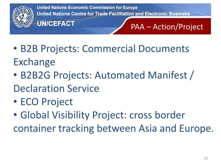 PAA – Action/Project