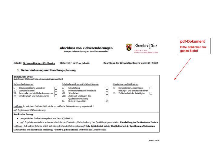 pdf-Dokument