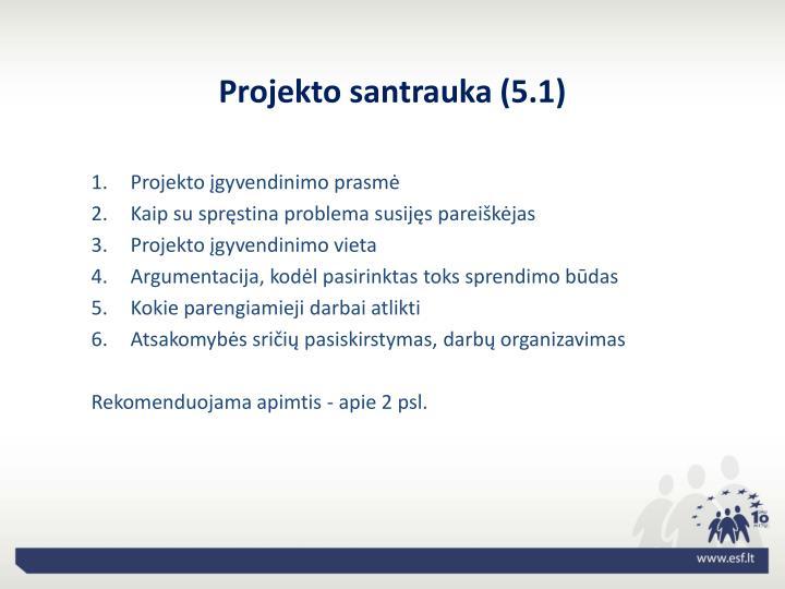 Projekto santrauka (5.1)