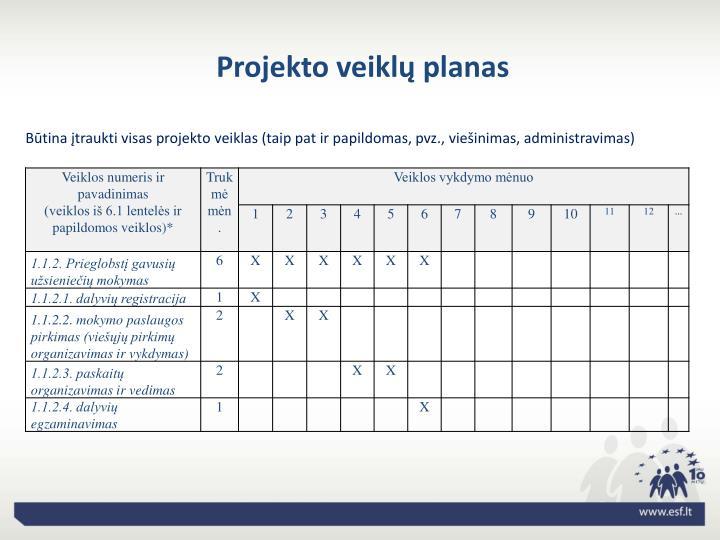 Projekto veiklų planas