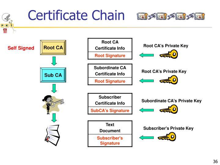 Certificate Chain