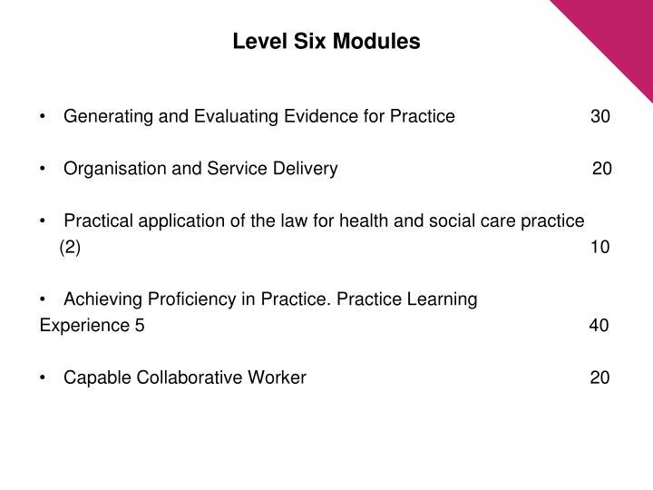 Level Six Modules