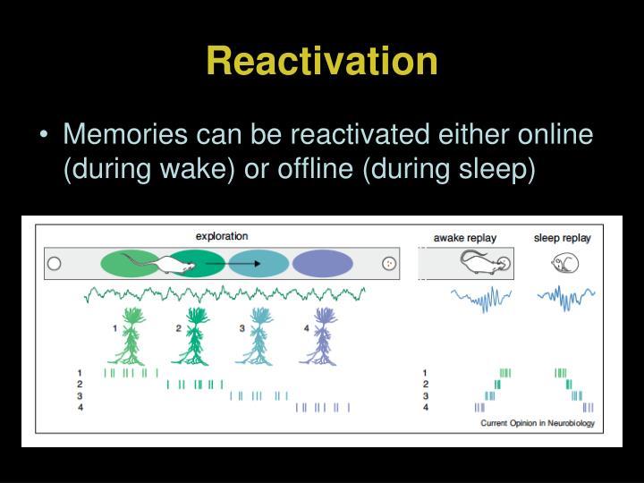 Reactivation