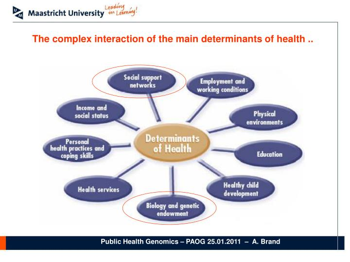 The complex interaction of the main determinants of health ..