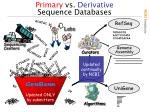 primary vs derivative sequence databases