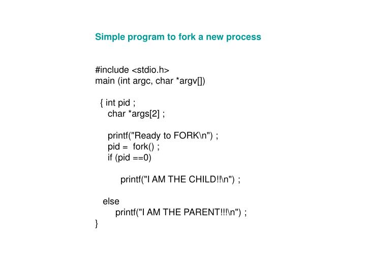 Simple program to fork a new process