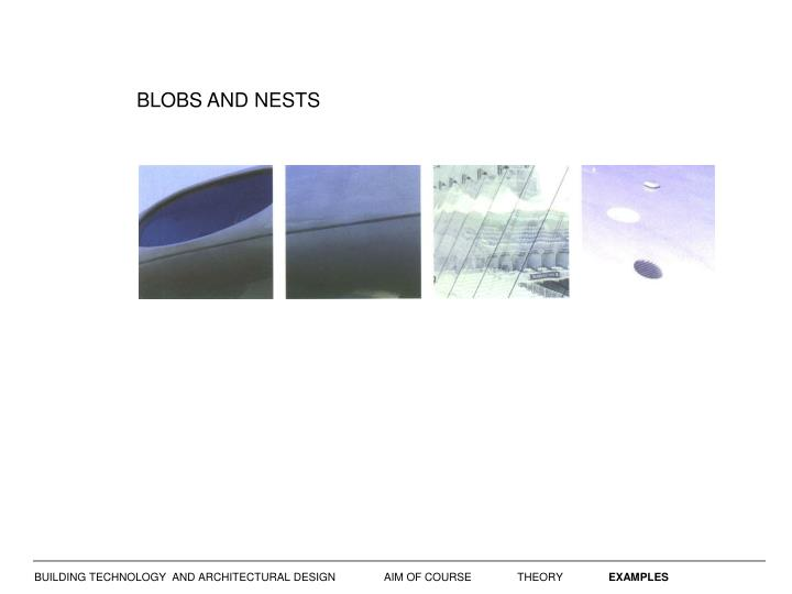 BLOBS AND NESTS