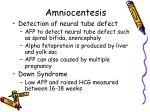 amniocentesis1