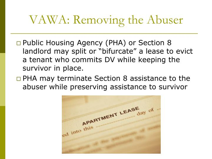 VAWA: Removing the Abuser