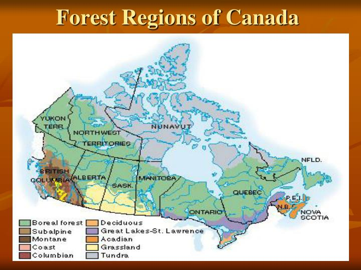 Forest Regions of Canada