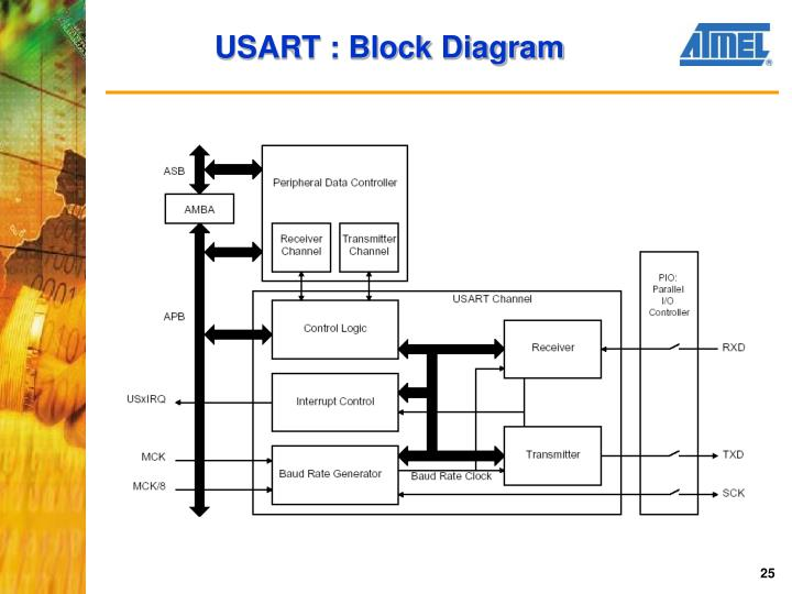 USART : Block Diagram
