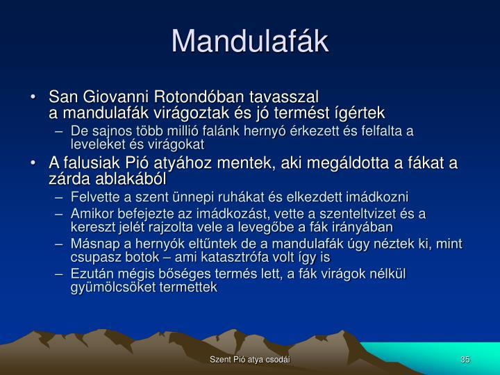 Mandulafák
