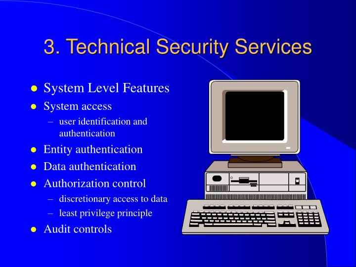 3. Technical Security Services