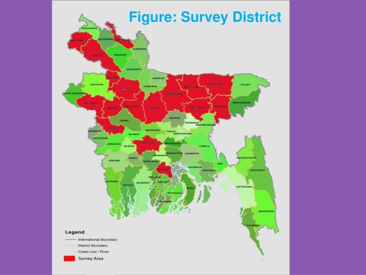 Figure: Survey District