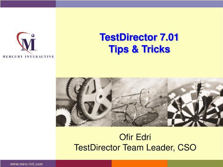 Testdirector 7 01 tips tricks