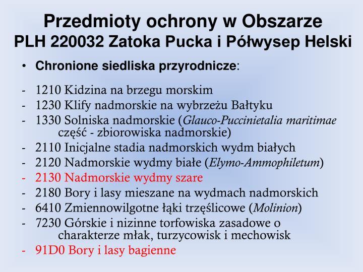 Przedmioty ochrony w obszarze plh 220032 zatoka pucka i p wysep helski