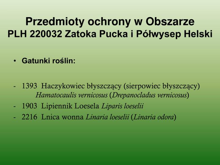 Przedmioty ochrony w obszarze plh 220032 zatoka pucka i p wysep helski1