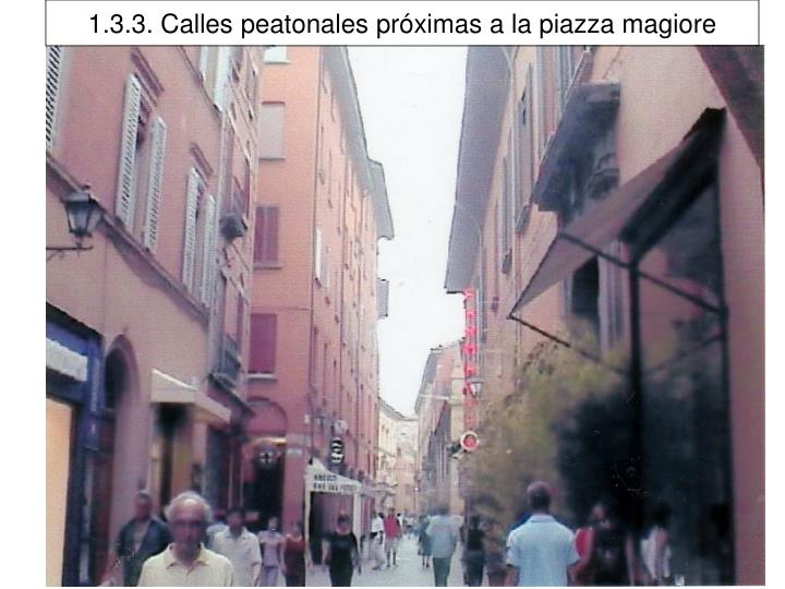 1.3.3. Calles peatonales próximas a la piazza magiore