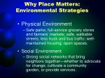 why place matters environmental strategies