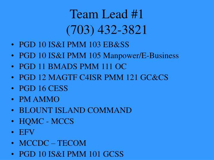 team lead 1 703 432 3821