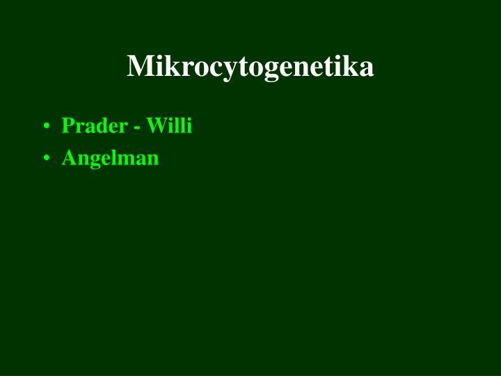 mikrocytogenetika n.
