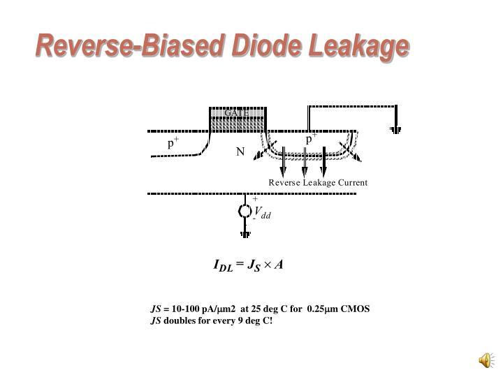Reverse-Biased Diode Leakage