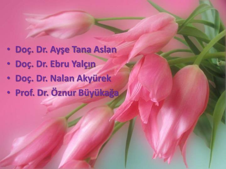 Doç. Dr. Ayşe Tana Aslan